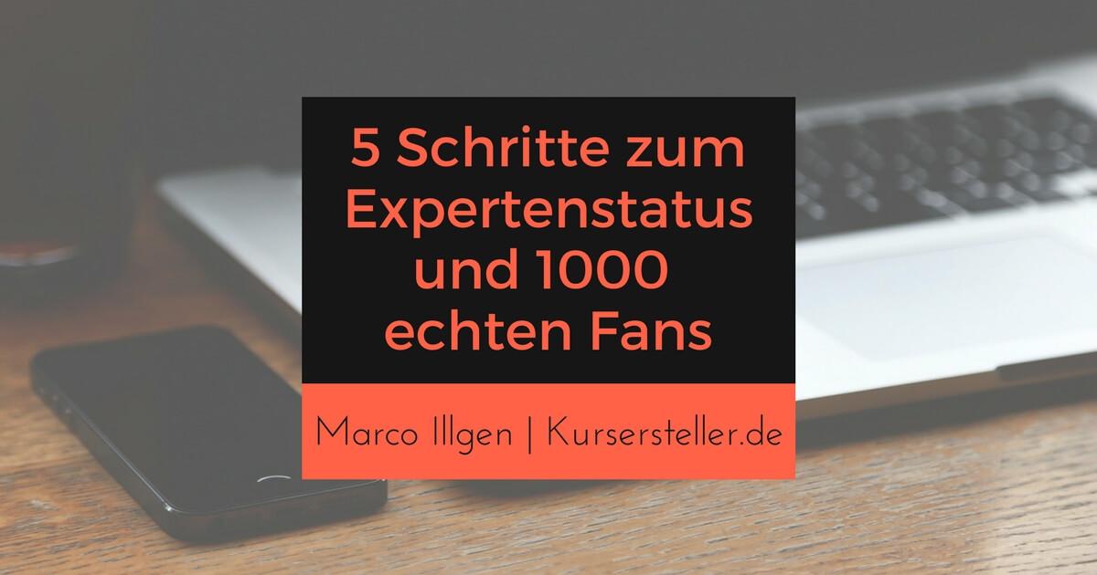 027 5 Schritte um Expertenstatus aufzubauen und 1000 echte Fans anzuziehen